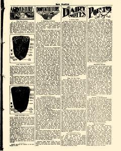 Basin Republican, August 09, 1905, Page 7