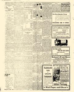 Buffalo Voice, August 03, 1905, Page 2