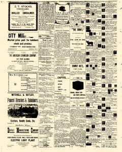 Buffalo Voice, August 26, 1905, Page 4