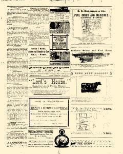Glenrock Graphic, March 07, 1890, Page 3